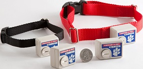 Electronic Dog Fence Products